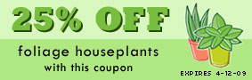 25% OFF Foliage Houseplants