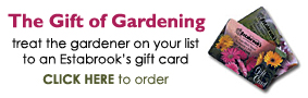 Estabrook's Gift Cards