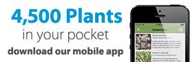 Estabrook's Mobile App