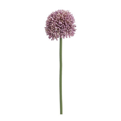 Allium Spray - Lavender