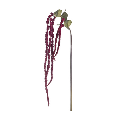 Amaranthus Hanging Spray - Red