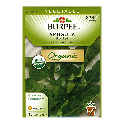 Seeds - OR Arugula 'Roquette'