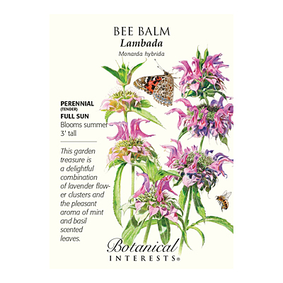 Seeds - BI Bee Balm Lambada
