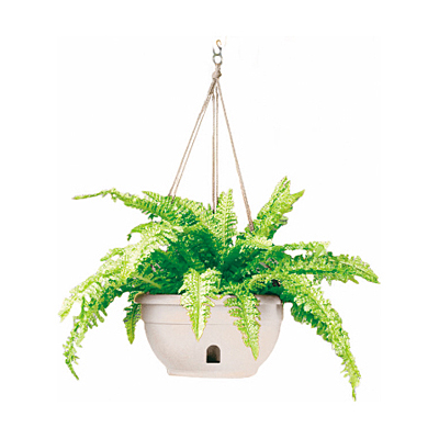 EEZY-GRO Hanging Basket - White