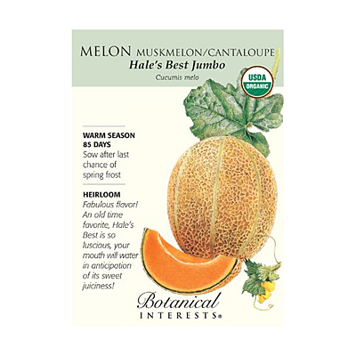 Seeds - BI Melon Hales Best Jumbo Org