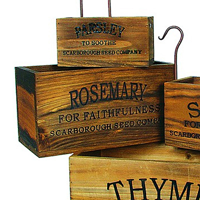 Herb Box - Rosemary