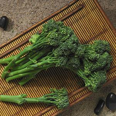 Broccolini 'Aspabroc'