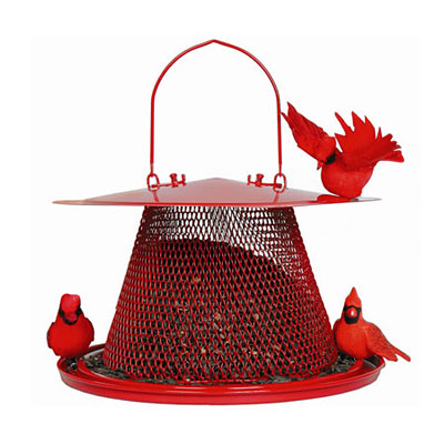No/No Feeder Cardinal Red