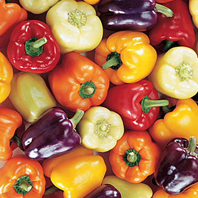 Seeds - Pepper, Sweet 'Carnival Mix'