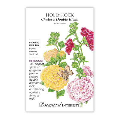Seeds - BI Hollyhock Chater's Double Blend