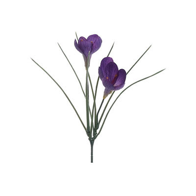 Crocus Spray - Violet