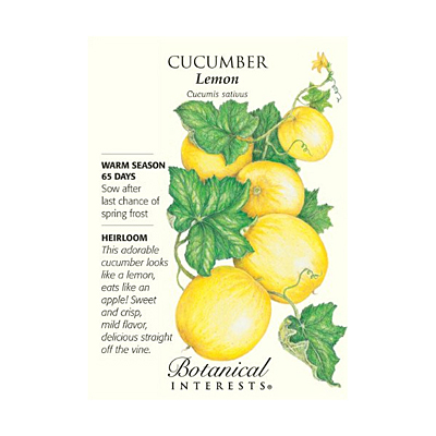 Seeds - BI Cucumber Lemon