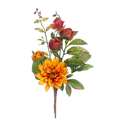 Pick - Dahlia, Chinese Lantern Yellow/Rust