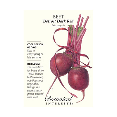 Seeds - BI Beet Detroit Dark Red