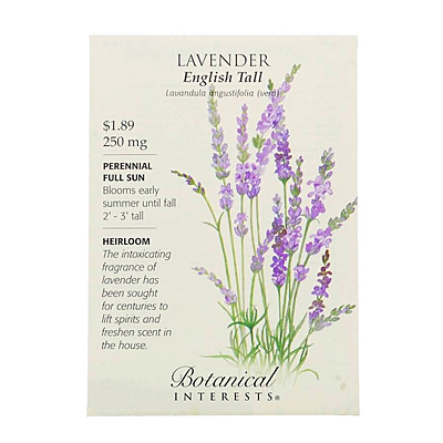 Seeds - BI Lavender English Tall