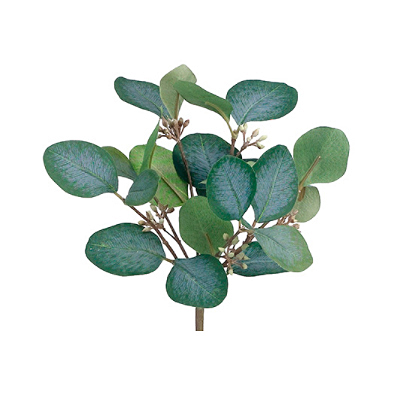 Eucalyptus Bush - Green, Gray