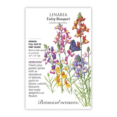 Seeds - BI Linaria Fairy Bouquet
