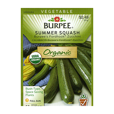 Seeds - OR Squash, Summer 'Burpee's Fordhook Zucchini'