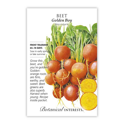 Seeds - BI Beet Golden Boy