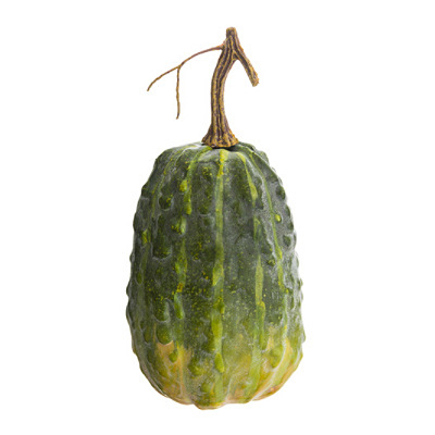 Weighted Gourd - Green