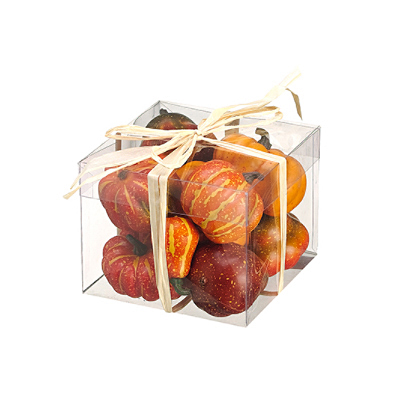 Assorted Pumpkins & Gourds in Box