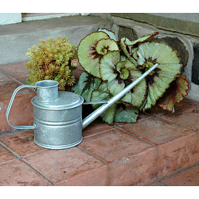 Watering Can - Galvanized Greenhouse