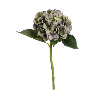 Single Hydrangea Spray - Green/Purple