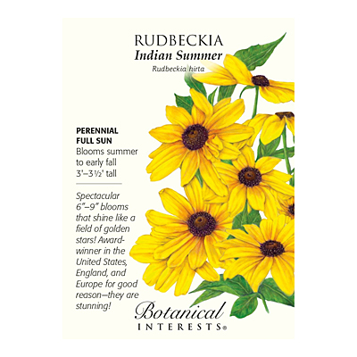 Seeds - BI Rudbeckia Indian Summer