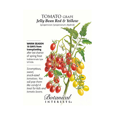 Seeds - BI Tomato Grape Jelly Bean Red & Yellow