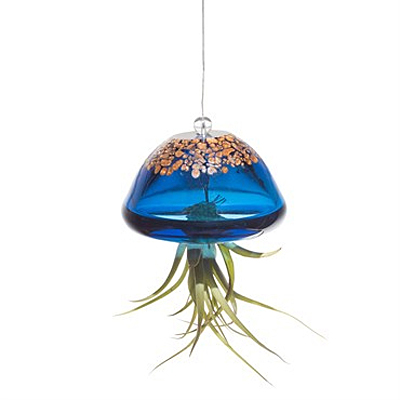 Jellyfish Airplant Holder - Teal