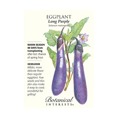 Seeds - BI Eggplant Long Purple