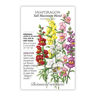 Seeds - BI Snapdragon Tall Maximum Blend