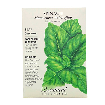 Seeds - BI Spinach Monstrueux de Viroflay
