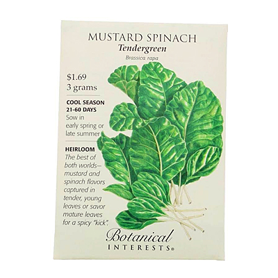Seeds - BI Mustard Tendergreen