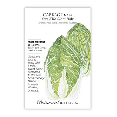 Seeds - BI Cabbage Chinese One Kilo Hydrid