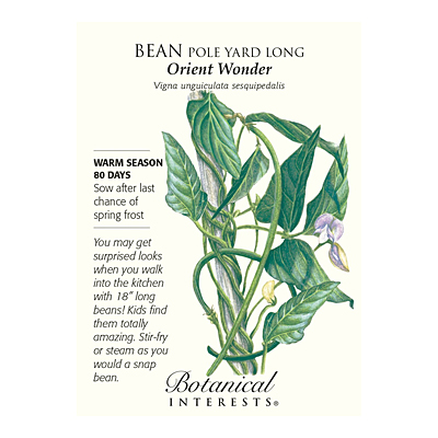 Seeds - BI Bean Pole Yard Long Orient Wonder