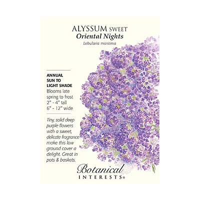 Seeds - BI Alyssum Sweet Oriental Nights