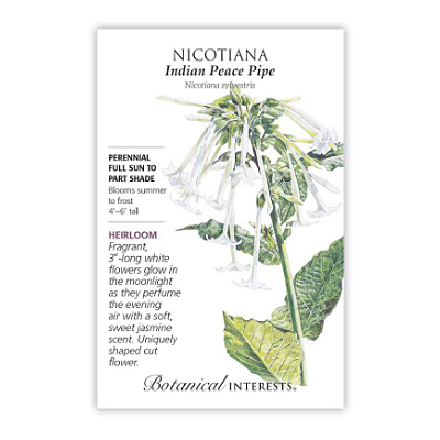 Seeds - BI Nicotiana Indian Peace Pipe