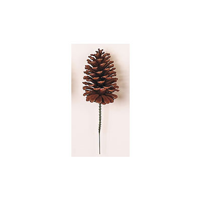 Pick - Loblolly Single Cone Natural