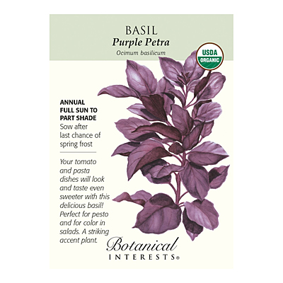 Seeds - BI Basil Purple Petra Org