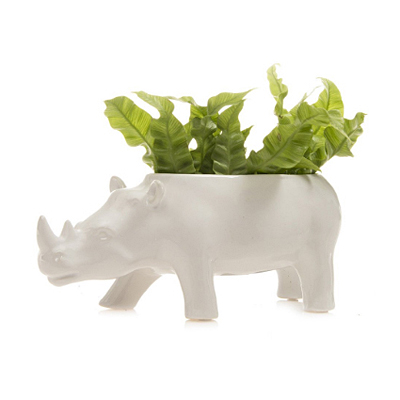 Rhino Planter - White