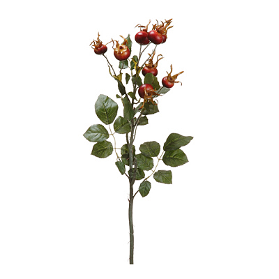 Rose Hip Spray - Burgundy