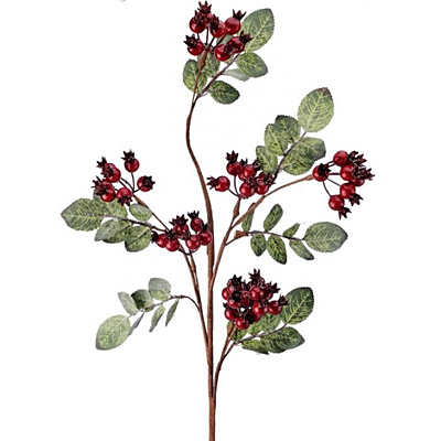 Pick - Rose Hip Berry with Leaves Red WP