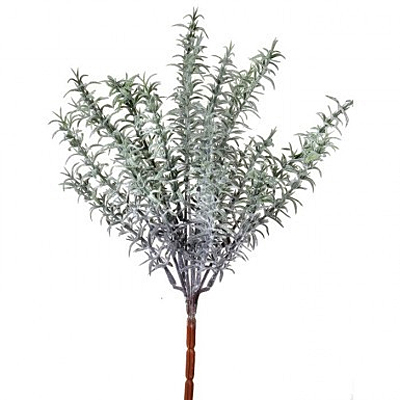 Rosemary Natural Touch Frost Bush x7