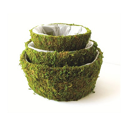 Basket - Moss Roseville Basket