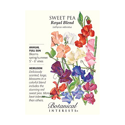 Seeds - BI Sweet Pea Royal Blend