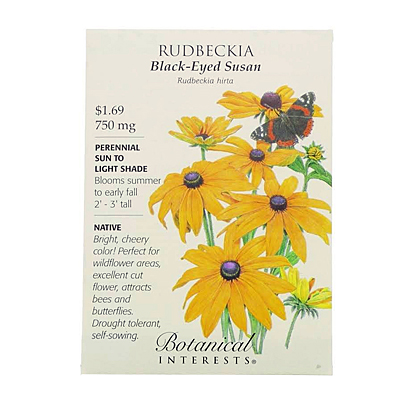 Seeds - BI Rudbeckia Black-Eyed Susan