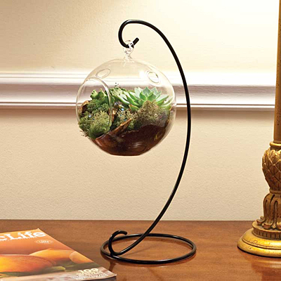 Mika Terrarium Scroll Stand