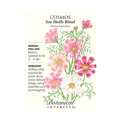 Seeds - BI Cosmos Sea Shells Blend