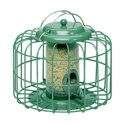 Nuttery Oval Mini Seed Bird Feeder - Ocean Green